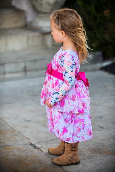 'The Dress'