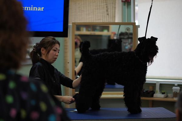KBTCNC grooming workshop 2014