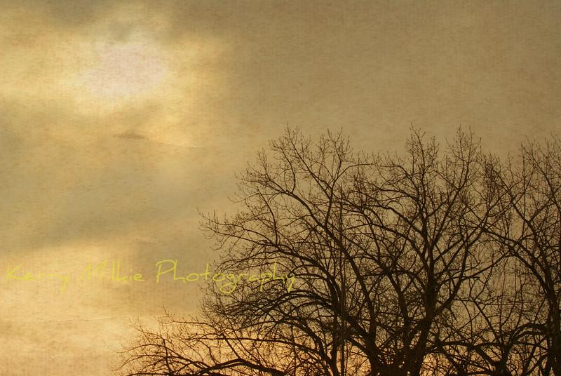 Parchment Sunrise