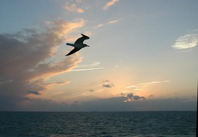 Key Largo 2002