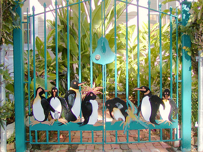 Penguins in Key West? On the gate anyway.