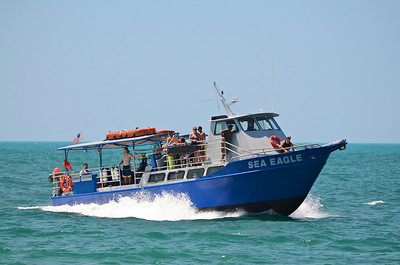 The Sea Eagle is a dive boat located in the Key West Bight at a dock beside the Conch Republic Restaurant and provides daily trips to the reef.