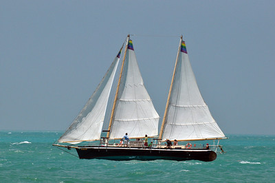 A Wrecker's Race is held four times a year over a 7 mile course from Key West to Sand Key. This is the April 2010 race.