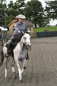 Novice Horse Open_20180901_0019