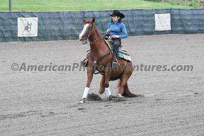 Green Reiner Horse_20180902_0030