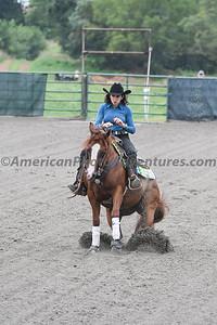 Green Reiner Horse_20180902_0045