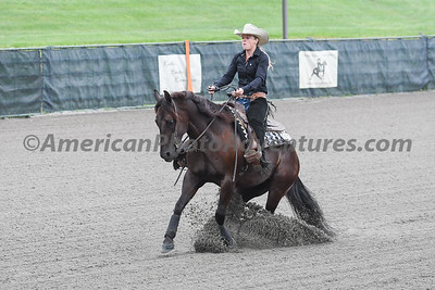 Green Reiner Horse_20180902_0002
