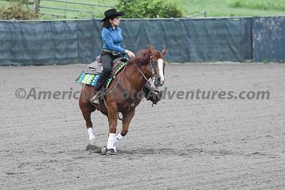 Green Reiner Horse_20180902_0035
