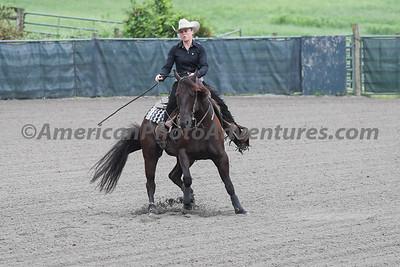 Green Reiner Horse_20180902_0006