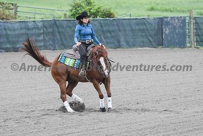 Green Reiner Horse_20180902_0034