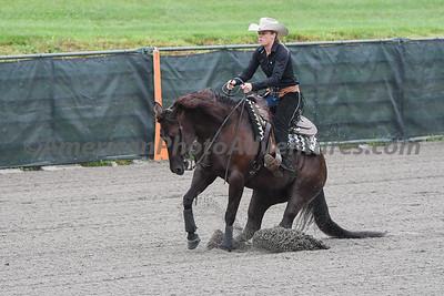 Green Reiner Horse_20180902_0027