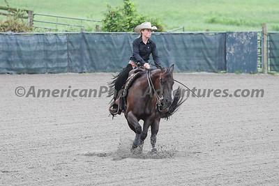 Green Reiner Horse_20180902_0009