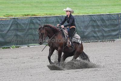 Green Reiner Horse_20180902_0025
