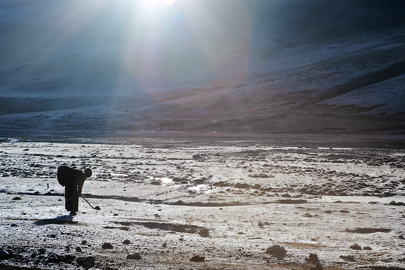 Collecting yak dung in the morning. Near Nangchen, Kham (Qinghai)
