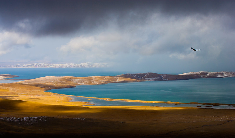 Ngoring Lake, close to the source of the Yellow River. Amdo (Qinghai)