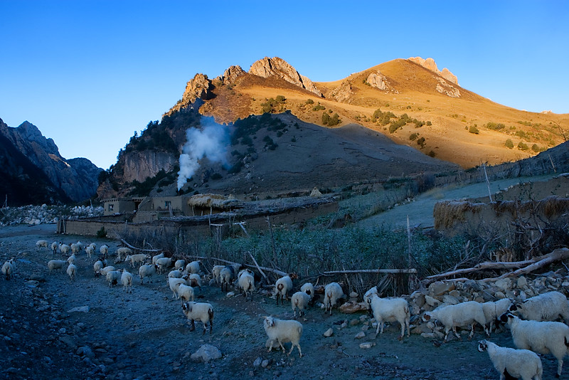 Early morning near Nangchen, Kham (Qinghai)