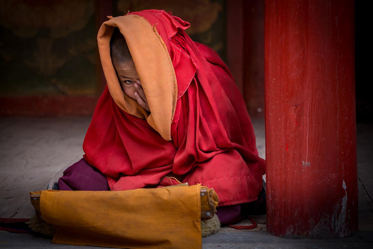 Novice monk, Rabgya Gompa - Darlak