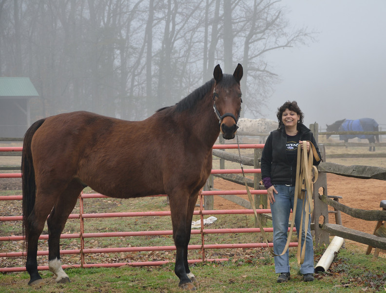 January 13, 2013 - A foggy, damp, dreary day at the barn.