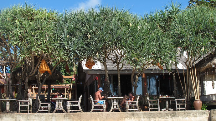 Umbrella trees provide shade on Klong Nin beach