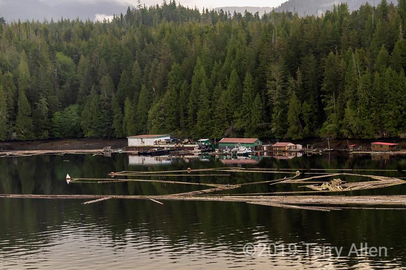Log booms and oceanside camp, Seal Cove, Prince Rupert, British Columbia
