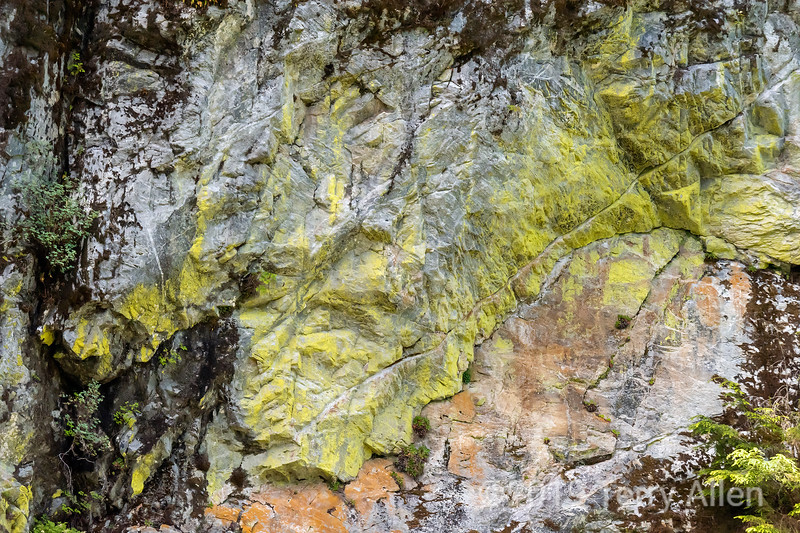 Colourful rock face on the shorline of Khutzeymateen Inlet, BC