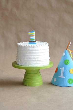 Wes - 1st Birthday & Cake Smash