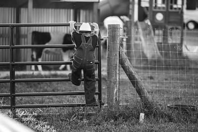 2017-05-03 Wyatt -  Kathy Denton Photography (18)