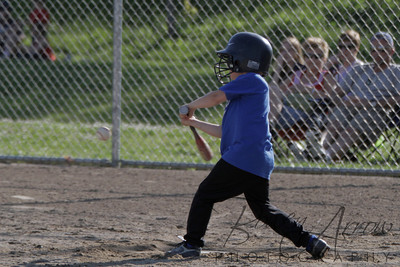Duraclean Baseball 060110-0108
