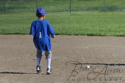 Duraclean Baseball 060110-0001