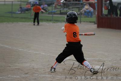 Duraclean Baseball 060510-0051