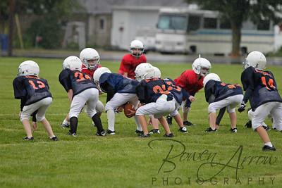Bears vs Bengals 20110907-0078
