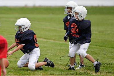 Bears vs Bengals 20110907-0010