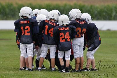 Bears vs Bengals 20110907-0046
