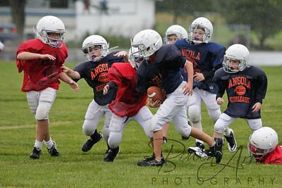 Bears vs Bengals 20110907-0075