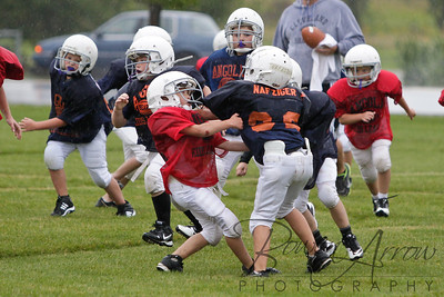 Bears vs Bengals 20110907-0073