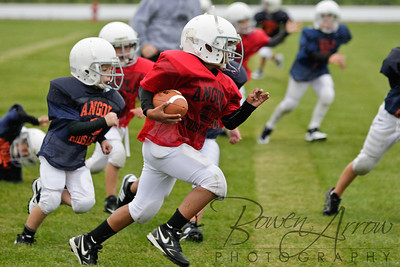 Bears vs Bengals 20110907-0027