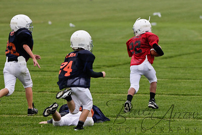 Bears vs Bengals 20110907-0036