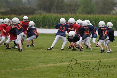 Bears vs Bengals 20110907-0066