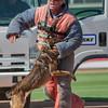 Desert Dog Trials 2016 -150