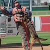 Desert Dog Trials 2016 -154