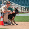 Desert Dog Trials 2016 -126