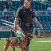 Desert Dog Trials 2016 -147
