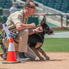 Desert Dog Trials 2016 -125