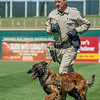 Desert Dog Trials 2016 -138