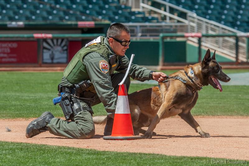 Desert Dog Trials 2016 -100