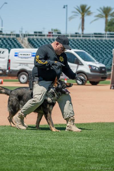 Desert Dog Trials 2016 -92