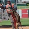 Desert Dog Trials 2016 -153