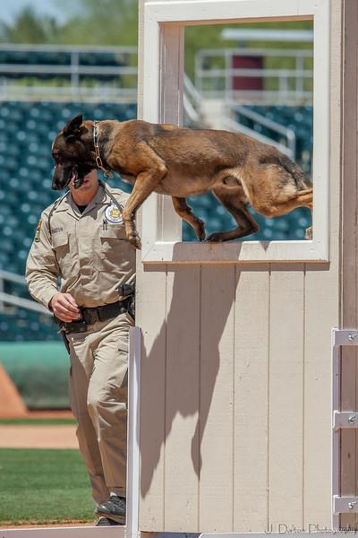 Desert Dog Trials 2016 -97