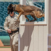 Desert Dog Trials 2016 -97