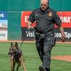 Desert Dog Trials 2016 -145